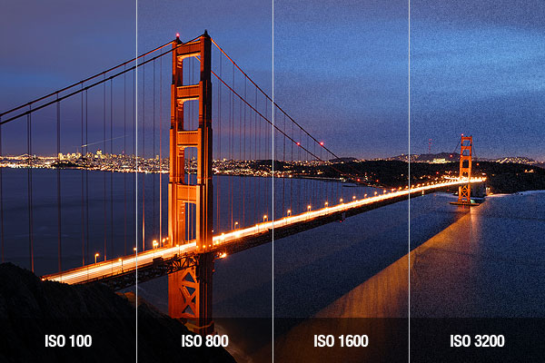 image-quality-and-iso-sensitivity